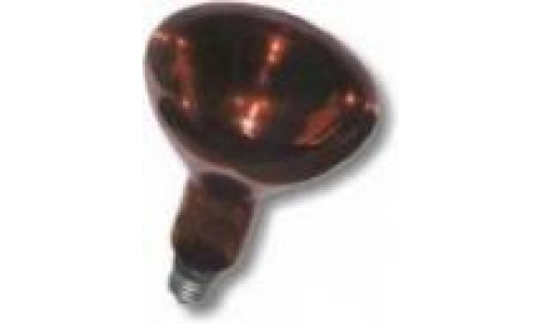 Kaitrinė šildymo lempa  IKZK 250W (raudona)